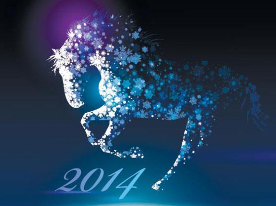 Nouvel-An-2014-4